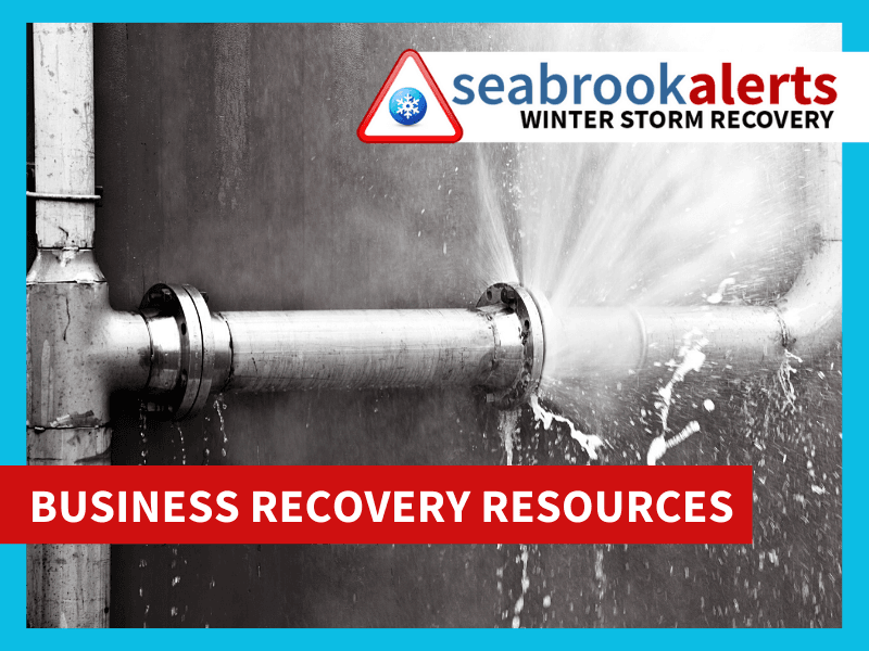 Winter Storm Business Recovery