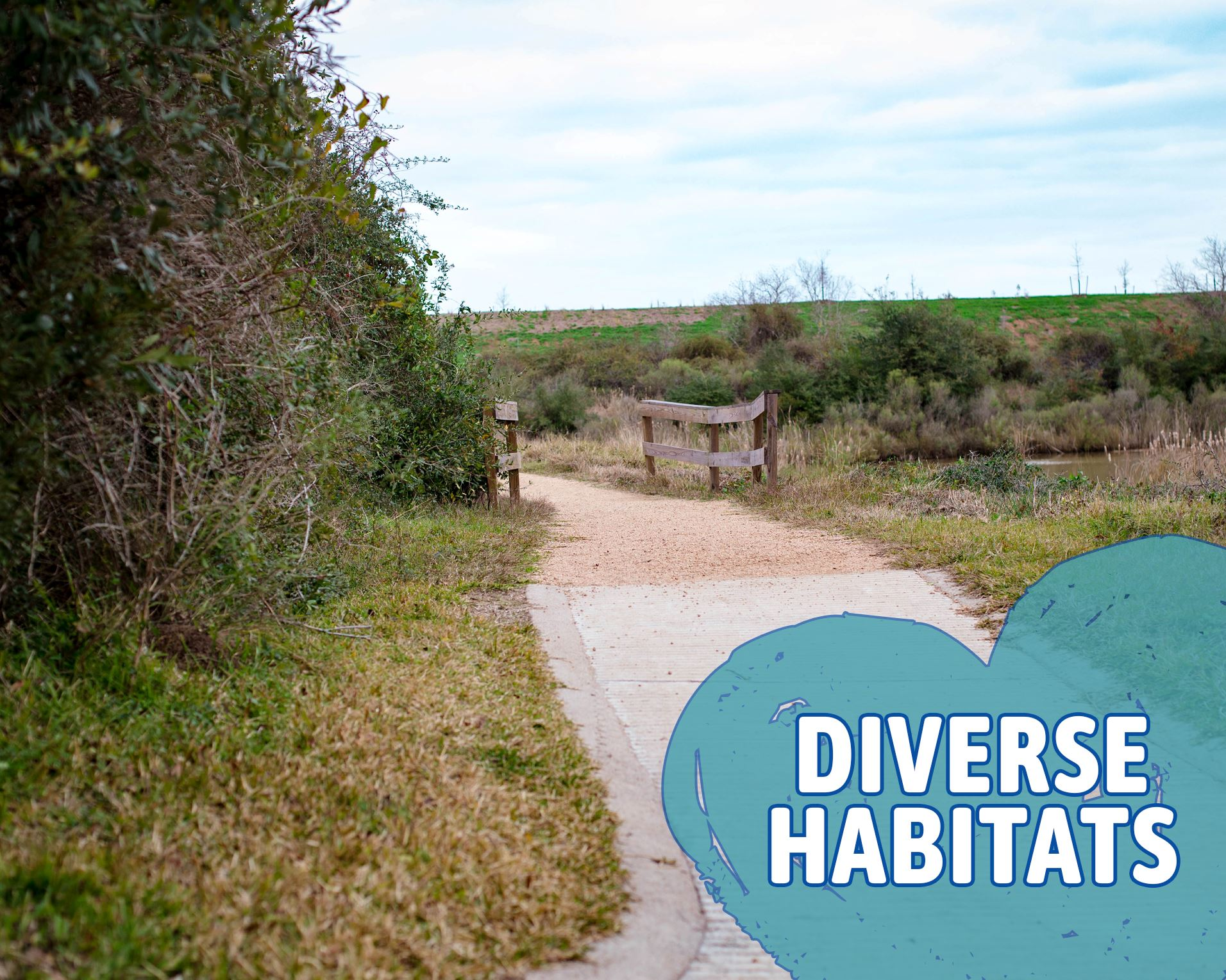 Trails - Diverse Habitat